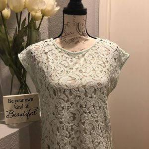 Loft- Lace Blouse